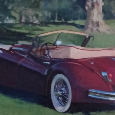 Jaguar beauty